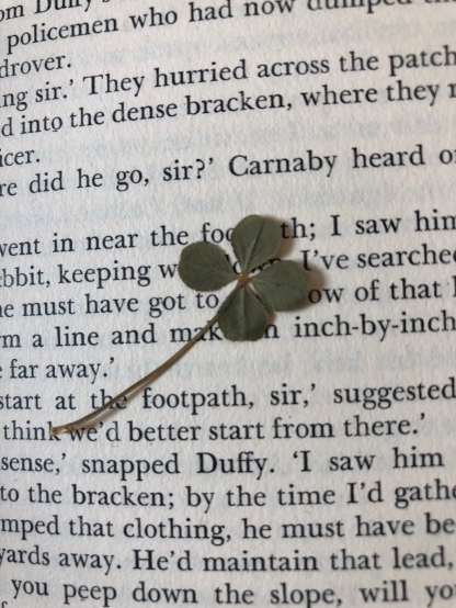 The four-leaf clover I found betI mentioned some time ago that one of the things I have started doing since my dad died is to make my way through his substantial back catalogue of books. As many of them were written when I was very young, I only ever read a few. In June last year, I was about a third of the way through his tenth novel, Carnaby and the Saboteurs, when, turning the page, I found a pressed four-leaf clover. I must admit, I was rather overcome at the sight of it, as it felt like my dad was sending me a message of good luck from beyond the grave. The book was published in 1970, and so it made me wonder whether that little clover had been hiding between the pages for almost 40 years. I have no way of knowing, but that tiny, dried and flattened weed suddenly became very special to me. Some people, myself included, are confused over the difference between a clover and a shamrock, and this Sunday, there will be many a trefoil displayed both in Ireland and further afield as the Celtic nation commemorates the death of their patron, St Patrick. As my dad writes in his column from 17th March 1979, St Patrick, who is believed to have been born in around AD385, is credited with bringing Christianity to the country and is said to have worn the three-leaved plant as a symbol of the Holy Trinity. The story goes that while preaching to pagans, he used the leaf to explain the concept of one almighty God, but with three entities within him – God the Father, God the Son and God the Holy Ghost. In the same way, the shamrock had three separate small leaves that joined together to make the whole. He chose the perfect symbol, as the shamrock was already sacred to the pagans, and some cite it as the reason why he was so successful at converting them to Christianity. But going back to my four-leaf clover, I decided to find out what the difference between a shamrock and a clover is, if there is one. Its name comes from the Gaelic 'saemrog' which means 'little clover' and having done some digging, I now know that a shamrock is definitely a member of the clover family. But as there are many species of clover, the burning question is which family does a true shamrock actually come from? It seems that even experienced botanists differ over that question and they cannot agree which family of clovers the the true shamrock derives. We do know that all shamrocks are clovers but not all clovers are shamrocks, and the general consensus is that a four-leaf version can never be a shamrock. That might come as a surprise to some of our Irish-American friends, who have been known to show their pride in their Celtic ancestry by displaying a four-leaf clover on St Patrick's Day, believing it to be a shamrock. And there is even some confusion among the Irish in their homeland as, according to a 1988 survey by the National Botanic Gardens in Dublin, there were four different species that people displayed as shamrocks, only three of which were actually clovers with the potential to be true shamrocks (white clover, red clover and hop clover). The fourth wasn't a member of the clover family at all, but a lookalike called the black medick. This one can be more easily grown as a house plant, and therefore florists and shops stocked up on it so that eager consumers would buy them as a convenient decoration for St Patrick's Day. I wonder if the purchasers realised that the verdant main feature of their patriotic display was actually an imposter? I would be interested to hear from any Irish friends whether they have strong views, or a definitive answer, on what species of clover constitutes the 'true' shamrock. In the meantime, I have made sure that my special four-leaf treasure has its own protective box so that it doesn't come to any harm. It's such a delicate thing that I'm terrified it might disintegrate if I handle it too much. And hopefully, with my dad's blessing from above, it will bring me some good fortune in the future. I'm not asking for much, but something along the lines of a huge lottery win will do (Are you listening, Dad?). Read more at countrymansdaughter.com. Follow me on Twitter @countrymansdaug ENDSeen the pages of one of my dad's books