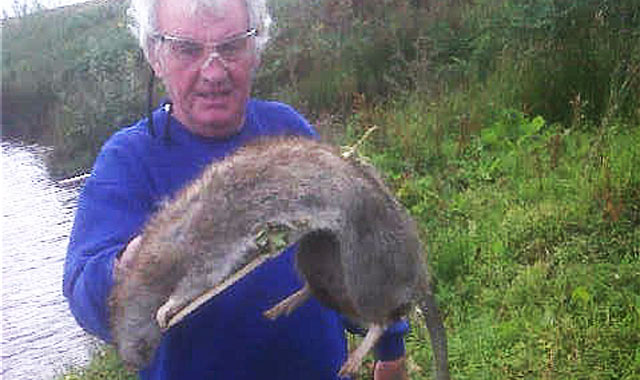 Brian Watson with the large rodent he killed