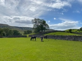 We had no problems with social distancing in the Yorkshire Dales